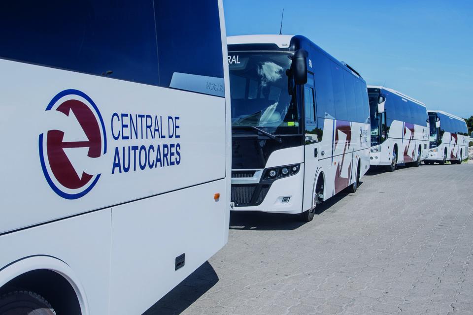 busvermietung-auf-Menorca